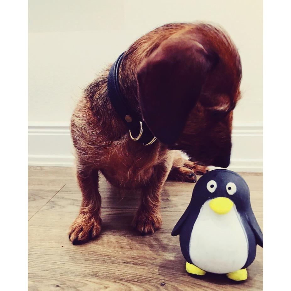 Hilde mit Pinguin