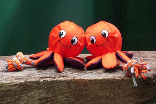 Octopus_klein